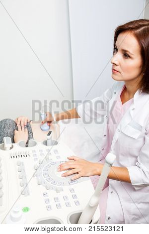 Sonographer scanning young pregnant woman's belly with ultrasonic transducer doing obstetric ultrasonography