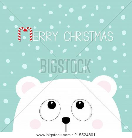 Merry Christmas Candy cane. Polar white little small bear cub head face looking up. Big eyes. Cute cartoon baby character. Arctic animal. Flat design Winter snow flake background. Vector illustration