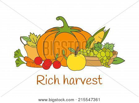 Rich autumn harvest concept. Group of ripe vegetables and fruits flat vector isolated on white background. Raw natural vegetarian products illustration for harvest festival, organic farm, grocery ad