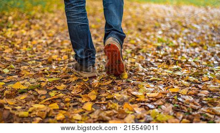 Movement of shoes park full leaves. A man stops walking. The girl's girlfriend's. Hot girls on the nature park among leaves of yellow. Autumn park bright colors