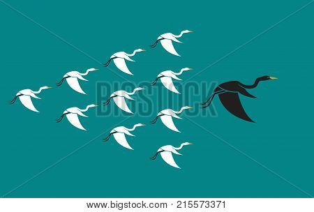Flock of birds flying on blue background Leadership and difference concept. Animal Heron.