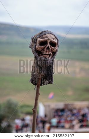 Human Skull with Worn Fabric Hat Outdoor on Thin Log.
