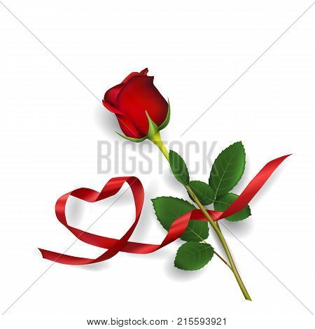 Red rose and heart made of red ribbon on white background. Greeting card for Valentine's day, women's day, mother's day, birthday. Vector illustration