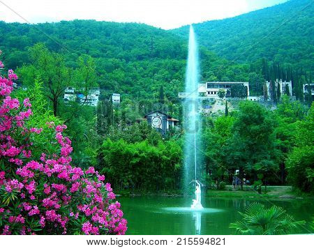 In the foreground there is a bush with very beautiful dark pink flowers. Behind them is a pond with green water. In the center of the pond is a fountain in the form of a man shooting from a bow in the sky. A jet of water flies out of the boom to a greater
