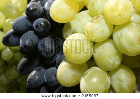 Bunch Of Mature Grapes 5