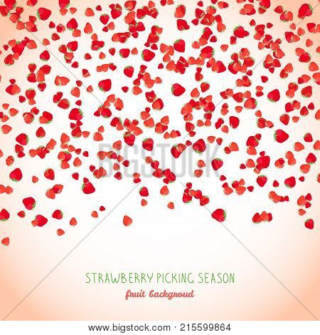 Falling strawberries text frame. Strawberry season poster or flyer. Copy space. Fresh juicy fruits. Vegetarian banner. Tiny berries scatter.
