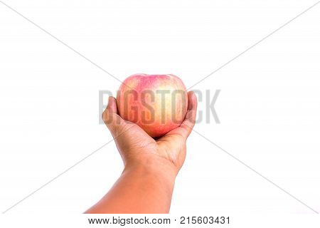 hand holds light red apple. Apple fruit on white background. copy space. Apple in fresh and juicy color. healthy food concept and life style. Vitamins and fitness concept.