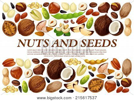 Nuts and fruit seeds or beans poster. Vector peanut or coconut and hazelnut, pistachio or almond walnut and legume bean pod, macadamia or filbert nut and pumpkin or sunflower seeds and coffee bean