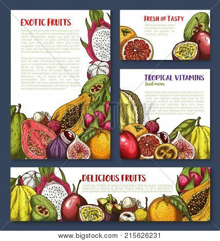 Exotic fruits sketch banner and poster template for tropical farm fruit market. Vector fresh fruits avocado, grape or lemon citrus orange and grapefruit or mangosteen and durian, pitahaya and papaya