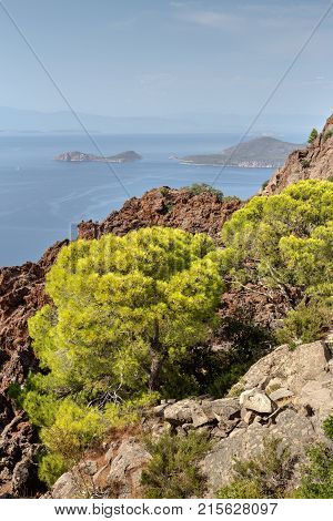 Seascape. View of the sea, small islets in the distance, pine and mountains of volcanic origin from a height