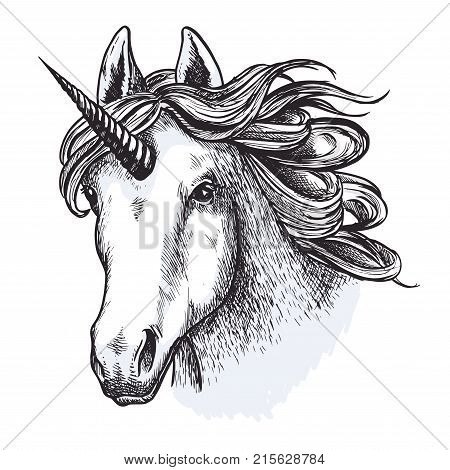 Unicorn head or muzzle sketch design of magic and mystic horse. Fairy tale horse with horn and waving mane for equine sport or equestrian races and contest exhibition. Vector isolated icon