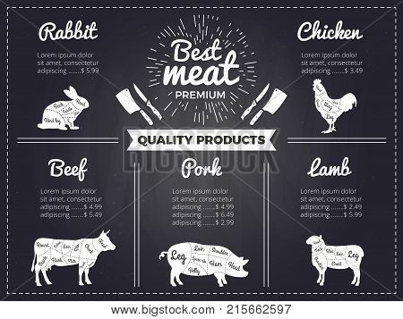 Hand drawn illustrations of domestic animals. Design template of menu for butcher shop. Pictures on black chalkboard. Menu butchery shop, beef scheme, diagram cattle vector