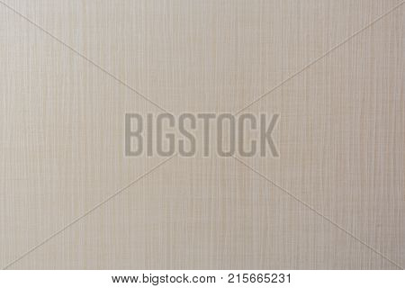 Grain Texture of Wall Provides Subtle Neutral Background Image