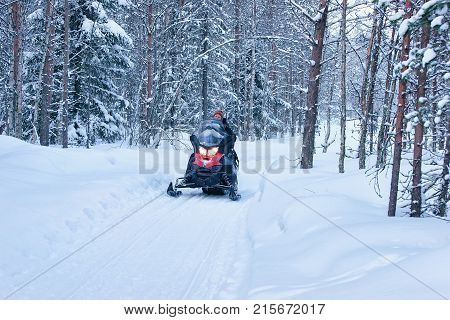 Rovaniemi Finland - March 3 2017: Woman riding red snowmobile at winter forest in Rovaniemi Lapland in Finland