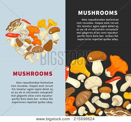 Fresh ripe edible mushrooms species collected in circle and heart-shaped heap on vertical advertisement posters with sample texts cartoon flat vector illustrations on blue and black backgrounds.