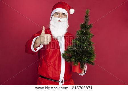 Santa Claus Recommends The Best Christmas Tree