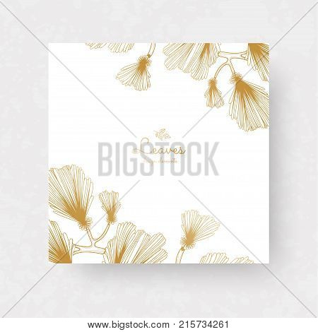 Ginkgo biloba branches with leaves. Medical isolated botanical plant. Golden ginkgo branches for invitations wedding greeting cards labels.