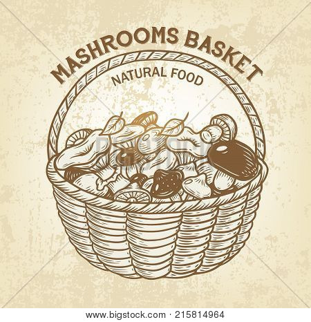 Vector basket with edible mushrooms. Realistic sketch of natural forest food, outline, retro design. Simple label is good for advertisment of natural products or recipe book design