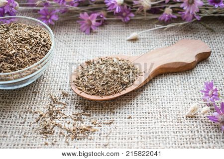 Dried Valerian roots in wooden spoon on sackcloth background. Valeriana officinalis Caprifoliaceae in herbal medicine. Valerian Root for Anxiety and Sleep. valerian extracts as nutritional supplement for health