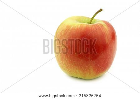 fresh new Dutch apple variety called
