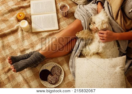 Woman with sweet gingerbread cookies, book, hot drink and cute dog lying on bed in the cozy room