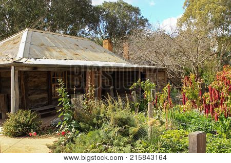 an old homestead in rural Australia in Summer