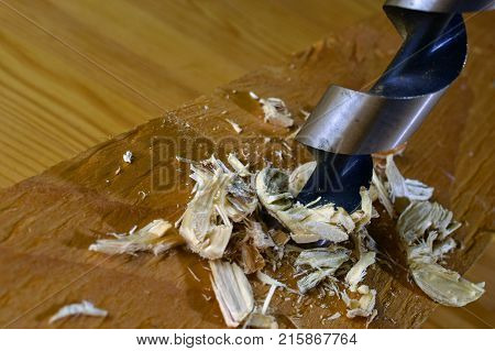 Drilling wooden plank with wood drill bit. Close up image with space for text.