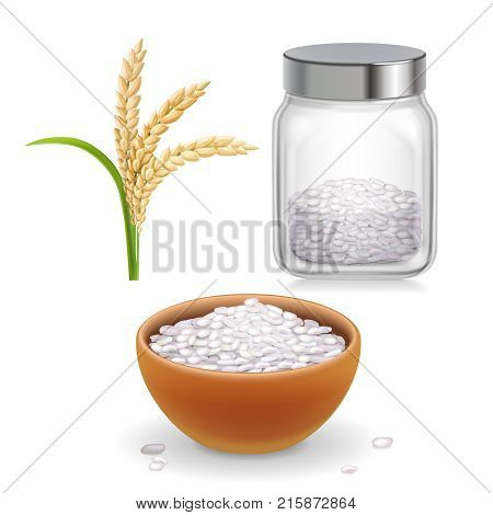 Rice ear and bowl , jar with long-grained and short-grained rice. Realistic set.