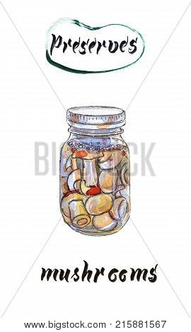 Marinaded mushrooms hand drawn watercolor illustration raster