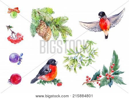 Winter decoration elemets. Watercolor new year set with red birds branches Christmas balls rowanberry mistletoe holly. Illustration isolated on white.