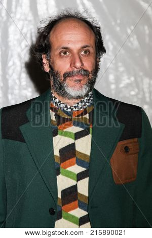 NEW YORK, NY - NOVEMBER 27: Luca Guadagnino attends the 2017 IFP Gotham Awards at Cipriani Wall Street.