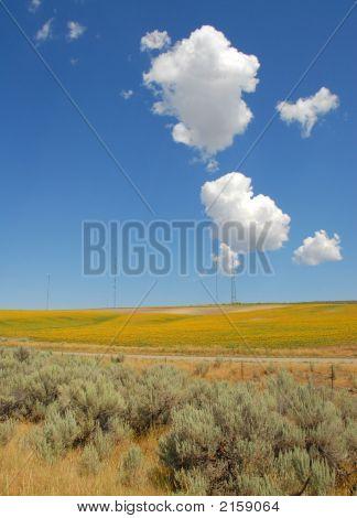Big Sky Utah