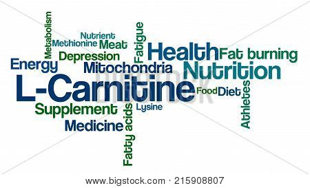Word Cloud On A White Background - L-carnitine