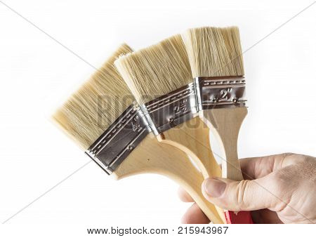 Paint brush unused for wood and metal on the white background