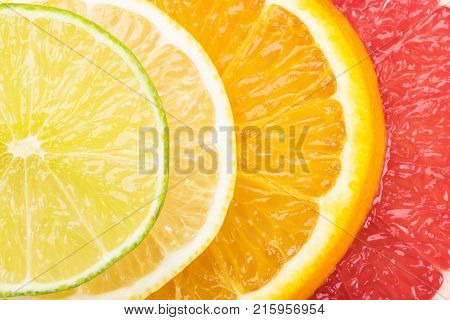 concept of round slices of citrus fruit bright background