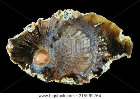 A cross section of the agate stone. Concentric agate with pseudomorphs. Origin: Rudno near Krakow Poland.