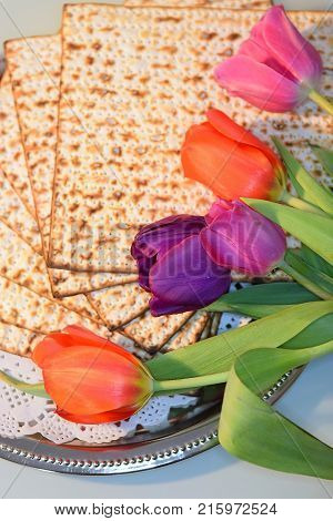 joyful spring festival - jewish holiday of Passover and its attributes, with matzo and spring tulips - Happy Passover