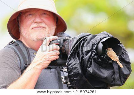 Santiago Island, Ecuador -april 22: Galapagos Flycatcher Sits On Lens Hood Of Man (blurred) On Santi