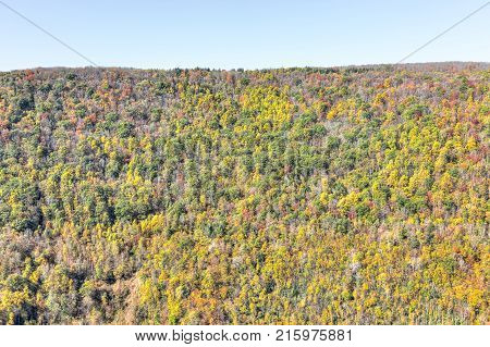 View Of Canaan Valley Mountains In Blackwater Falls State Park In West Virginia During Colorful Autu