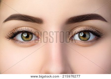 Close up view of beautiful brown female eyes. Perfect trendy eyebrow. Good vision contact lenses brow bar or fashion eyebrow makeup concept