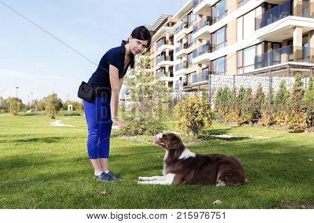 Professional Training Australian Shepherd Female Dog Handler
