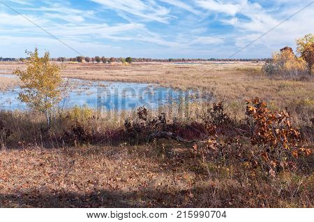 wetlands and prairie during autumn season at necedah national wildlife refuge in juneau county wisconsin