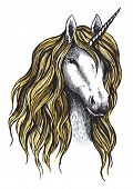 Unicorn horse vector sketch icon. Magic or mystic fairy horse with horn and waving mane. Isolated fantastic unicorn stallion symbol for equine sport or equestrian races contest exhibition poster