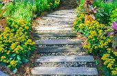 Pathway in garden, Flowers with bricks pathways,garden landscape design poster