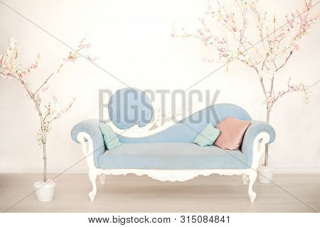 A Soft Blue Sofa With Artificial Flowering Trees In A White Living Room. Classic Style Sofa In The H