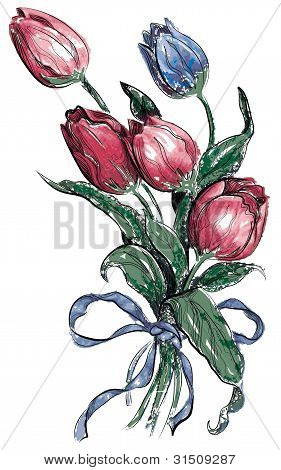 Tulip illustration