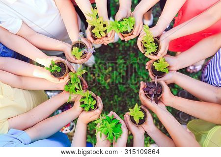 People Hands Cupping Plant In Nurture Environmental.