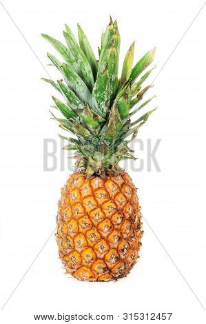 Pineapple Fruit With Leaf Isolated On White Background. Professional Studio Photo. Yellow Ripe Pinea