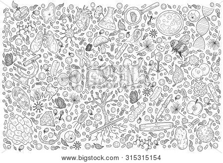 Doodle Science Vector Illustration . Biology And Biotechnology Set. Hand Sketches On The Theme Of Zo