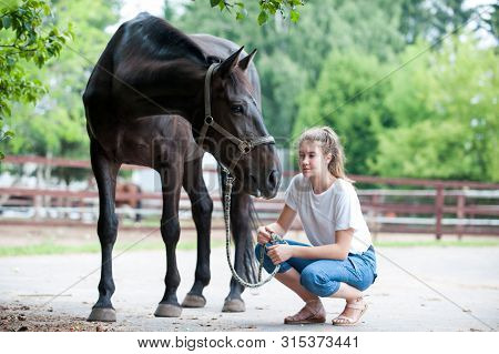 Black horse gazing away close to her owner - young teenage girl at ranch after training. Vibrant multicolored summertime outdoors horizontal image. poster